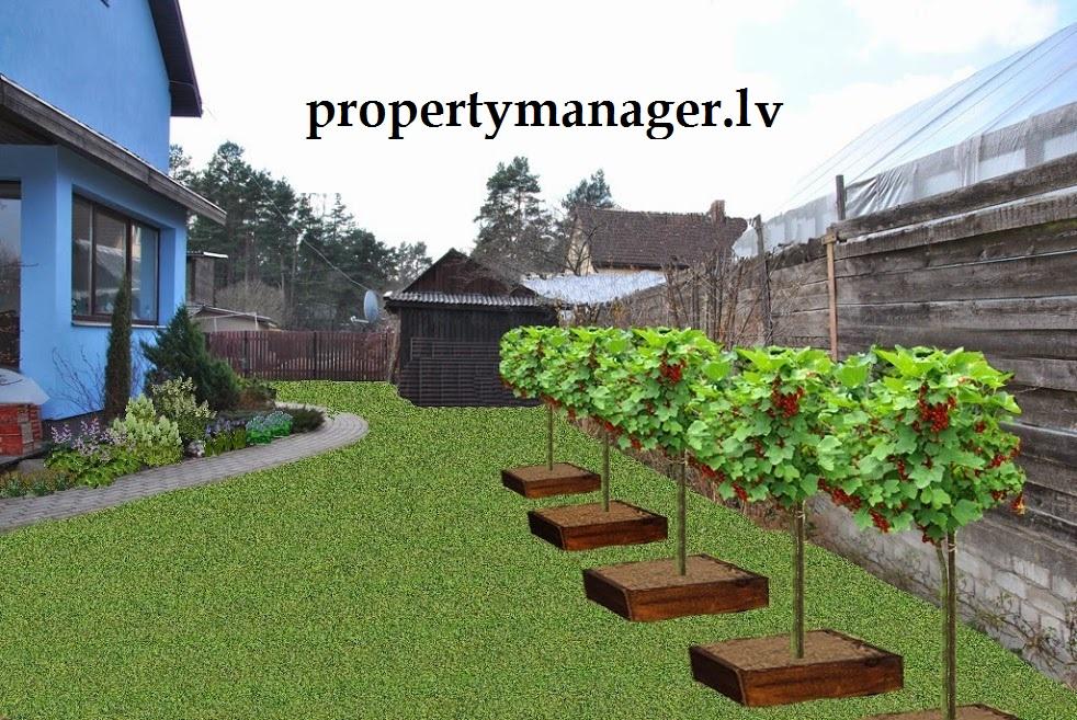 2D и 3D моделирование сада