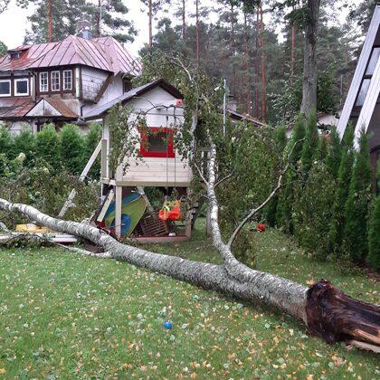 Ликвидация аварийнх последствий и спил деревьев
